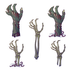 Set of lifelike depicted rotting zombie hands and skeleton hands rising from under the ground and torn apart. Painted linear drawing isolated on white background. EPS10 vector illustration