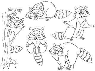 Vector Set of Cute Cartoon Raccoons