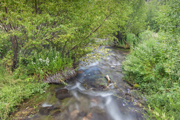 View of soft flowing water at Cascade Springs National Park, American Fork Canyon