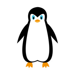 cartoon penguin on white background