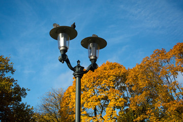Decorative street lamp and golden autumn  in a city park. Latvia, Riga.