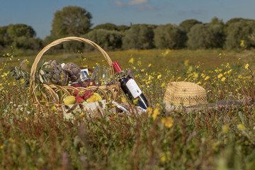 picnic, summer, food, grass, basket