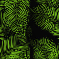 Beautiful tropical summer seamless pattern. Realistic palm leaves, brigh green color on black background