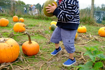 walking through pumpkin