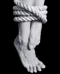 legs tied with a rope