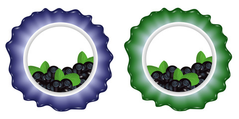 Berries label with blueberries. Template for design. Vector