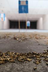 Spent gun shell casing's