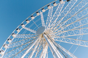 white ferris wheel during carnival