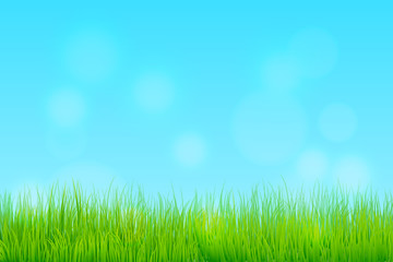 Happy Spring Season Background with meadow and clear sky.