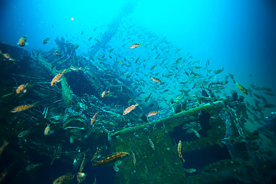 shipwreck, diving on a sunken ship, underwater landscape