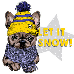 Close up vector portrait of French bulldog dog wearing beanie and scarf. Ski mode mood. Skecthed colored illustraion. Christmas, Xmas, New year. Party decoration, promotion, greeting card