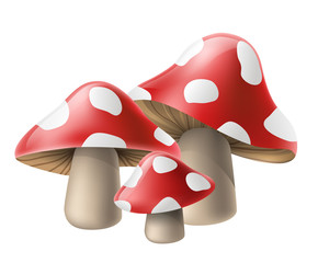 Poisonous red mushroom cluster with white spots, for autumn and fall season design. Vector illustration, isolated on white