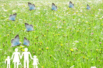 Blue butterflies flying on a family with green meadow background welfare concept