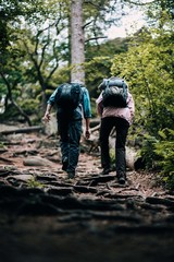 Fit mature couple hiking trough forest