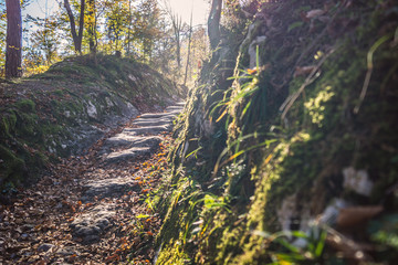 Alter Weg - Römerweg