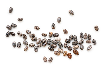 Canvas Prints Spices Closeup macro of small organic chia seeds isolated on a white background