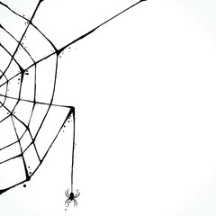 Hand drawn picture of spiderweb silhouette isolated on white background. Template for Halloween design. Vector illustration.