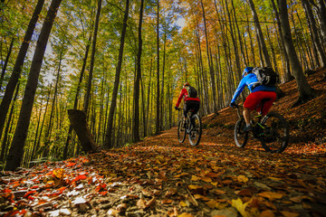 Wall Mural - Cycling, mountain biker couple on cycle trail in autumn forest. Mountain biking in autumn landscape forest. Man and woman cycling MTB flow uphill trail.