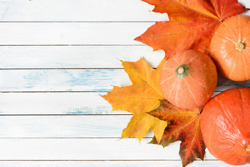 Pumpkins and maple leaf on old white wooden table. Top view and copy space for text