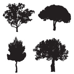 vector set with four silhouette trees