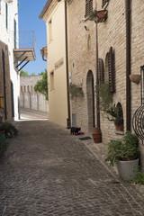 Corinaldo (Marches, Italy) at morning