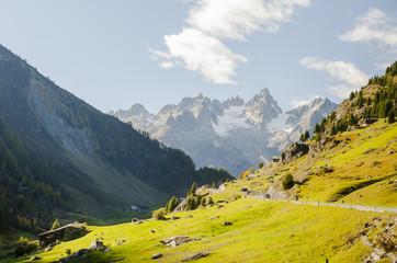 Wassen, Susten, Sustenpass, Passstrasse, Bergstrasse, Bergbauer, Alpen, Schweizer Berge, Alpental, Uri, Herbst, Schweiz