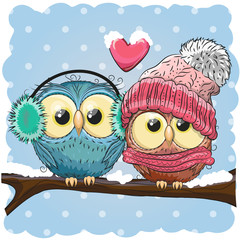 Two cute drawn Owls  sits on a branch