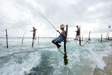 Stilt Fishermen. Sri Lanka.