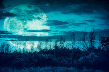 Colorful sky with dark cloudy and big moon over silhouette of trees in a wilderness area.