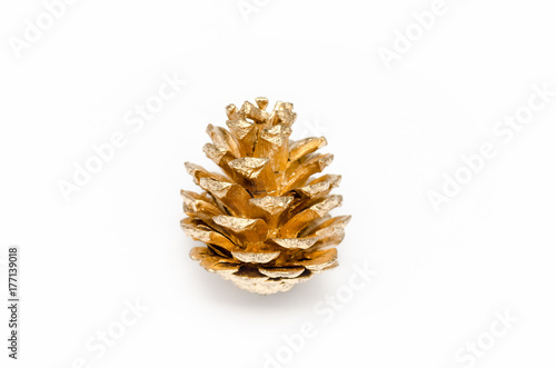 one golden pine cone on a white background stock photo and royalty