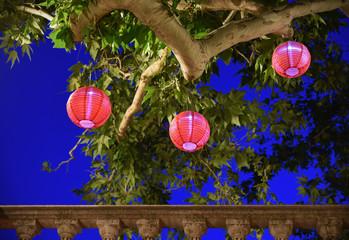 Drei rote chinesische Papierlampions hängen nachts in einem Baum