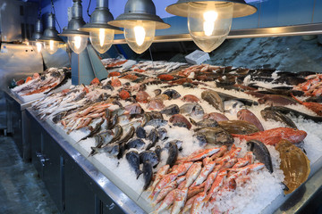 Papiers peints Poisson Variety of sea fishes on the counter in a greek fish shop.
