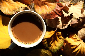 Autumn leaves and coffee cup over