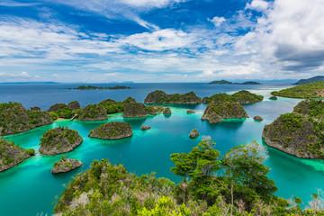 Pianemo Islands, Blue Lagoon with Green Rockes, Raja Ampat, West Papua. Indonesia