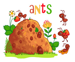 Vector illustration with an anthill and ants. Insects in the cartoon style.