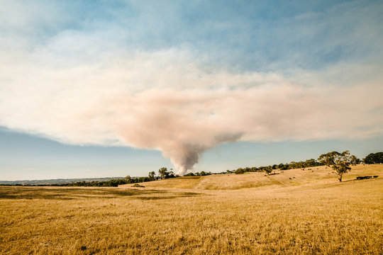 bushfire in the Adelaide Hills, Australia