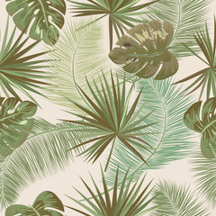 Seamless pattern of tropical leaves of palm tree.  Vector background.