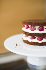 Chocolate with raspberry cake close up
