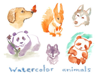 Watercolor animals  stickers