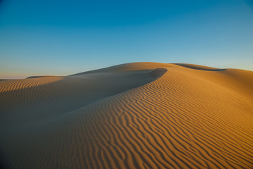 Natural desert landscape, sand dunes. Senek desert in the west Kazakhstan