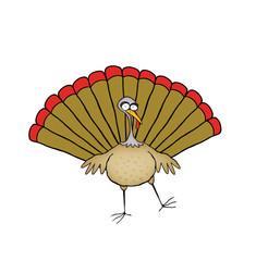 Funny Dancing Turkey