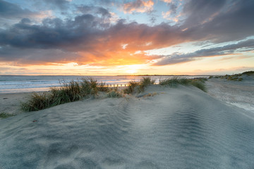 Wall Mural - Sand Dunes at West Wittering