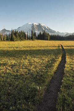 Mount Ranier walk