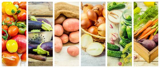 Collage of different vegetables. Vegetarian food.