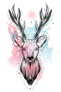 Bohemian illustration with hand drawn deer at watercolor background. Vintage, boho, gypsy style.