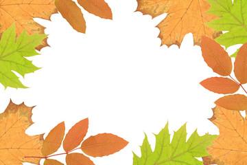 Ramka z suszonych liści