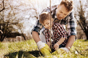 Happy male person working in garden with his son