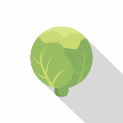 Cabbage icon, flat style