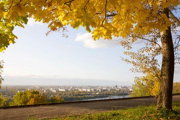 Golden autumn in the city park