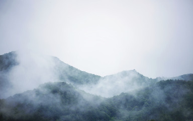 朝靄に包まれる山